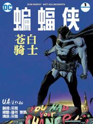 蝙蝠侠:苍白骑士